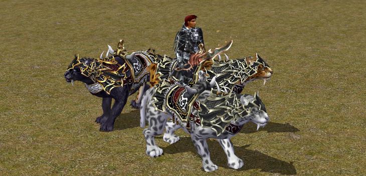 Jezdečtí leopardi